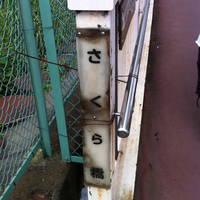 さくら橋 / 毛長川