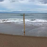 メッセージ性の強すぎる「砂浜に棒」
