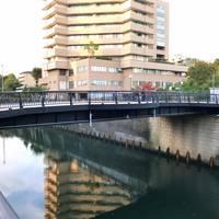 なかめ公園橋全景