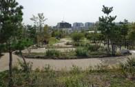 20141027 Meguro Sky Garden