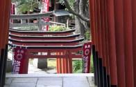 Ueno Park Part 1