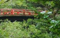 Shiraito River