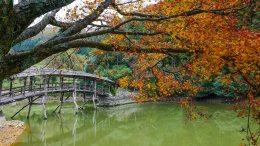 Yuge Shrine and the Taiko Bridge