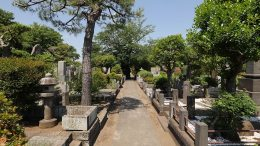 Walking around Joshinji temple cemetery