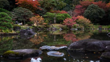 Superb autumn colors in one of the finest gardens in Tokyo