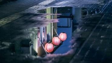 red lanterns wet_featured