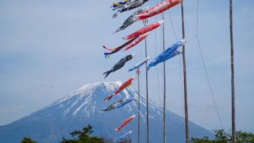 Colorful koinobori and Mount Fuji