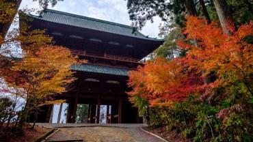 One week in Wakayama
