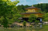 Kinkaku-ji in Summer