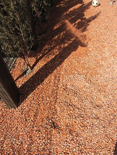 庭にテコラ敷きこみ