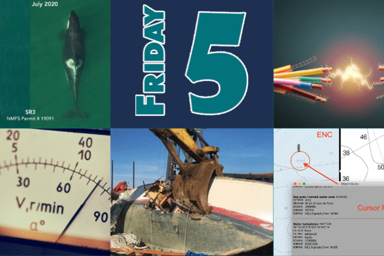 Friday Five July 31
