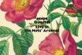 MMM Quartet: Live at the Metz' Arsenal (Leo Records, 2012)