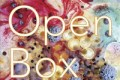 Jon Raskin and Carla Harryman: Open Box (Tzadik, 2012)