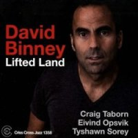 david_binney_lifted_land