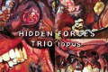 Hidden Forces Trio: Topus (Bruce's Fingers, 2013)