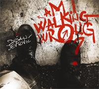 Dusan Jevtovic Am I Walking Wrong? Moonjune Records, 2013