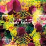Naoko Sakata Trio: Dreaming Tree (Footprint Records, 2016) [Grabación]
