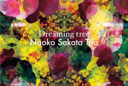 Naoko Sakata Trio – Dreaming Tree, (Footprint Records, 2016) [Grabación]