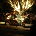 XXXI Eivissa Jazz (I): Natural Focus (2019-09-04) [Concierto]