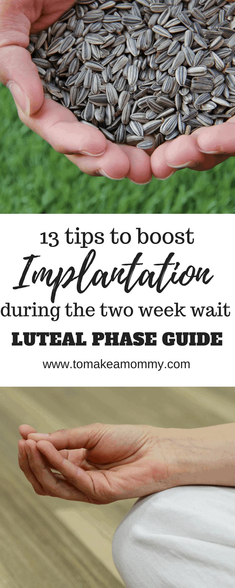 Getting Pregnant Implantation