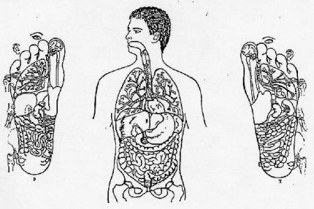 Mapa Reflexologia