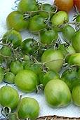 Grüne Tomaten im Herbst (Bildquelle: Henry)