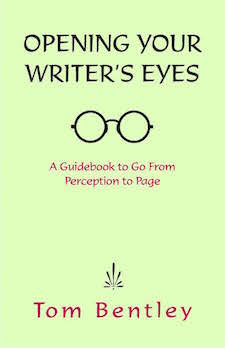 WritersEyes v3