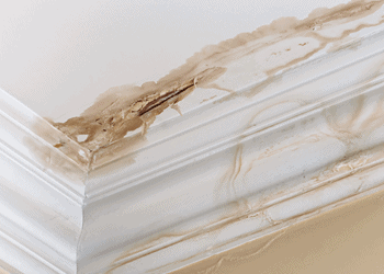 What Causes Roof Leaks with Tom Byer Roofing Service in Orange County