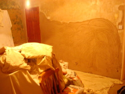 Pic during plastering