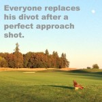 Replacing divots