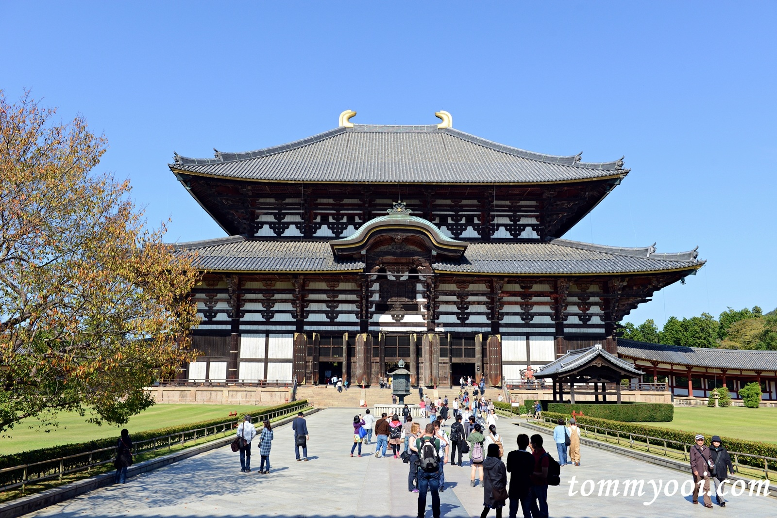 Todaiji Temple - Tommy Ooi Travel Guide
