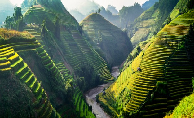 Rice fields on terraces in the sun at MuCangChai, Vietnam.