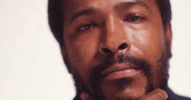 marvin-gaye-you-are-the-man
