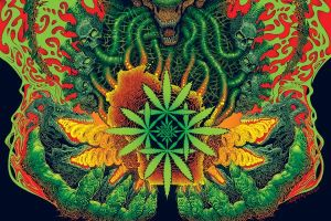 bongzilla-weedsconsin