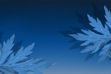 mugwort leaves on blue dream like background
