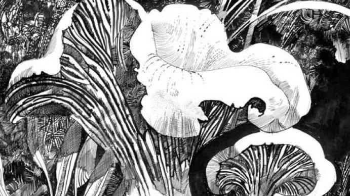 Pribiloff 1898 y otras historias septentrionales, de Sergio Toppi