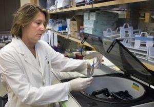 Using Estrogen as a Mechanism in Multiple Sclerosis
