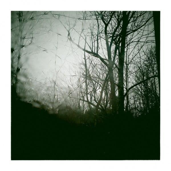 A Winters Daydream