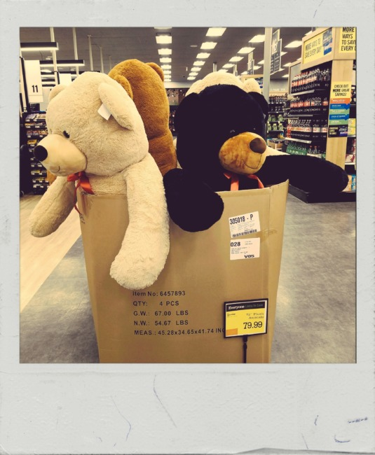 Box Of Bears