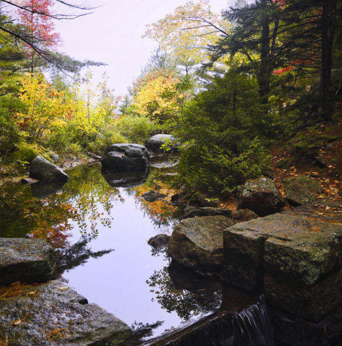 Photography Featured From Catskills And Acadia National Park