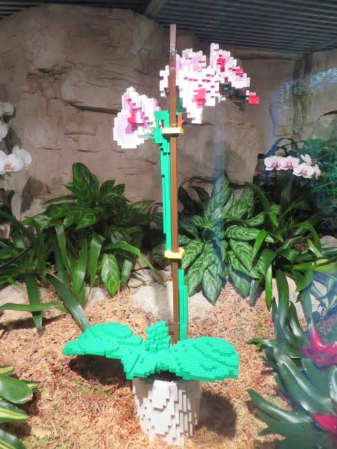 San Antonio Botanical Garden 10