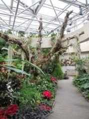 San Antonio Botanical Garden 11