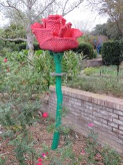 San Antonio Botanical Garden 30