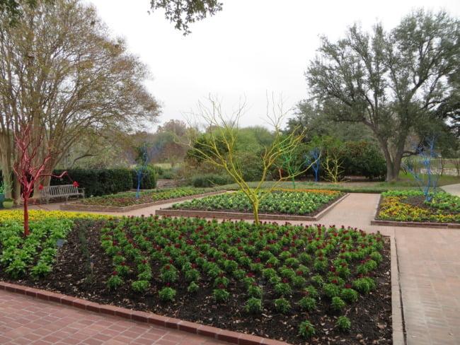 San Antonio Botanical Garden 5