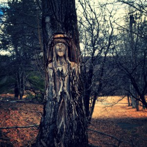 The Indian In The Tree