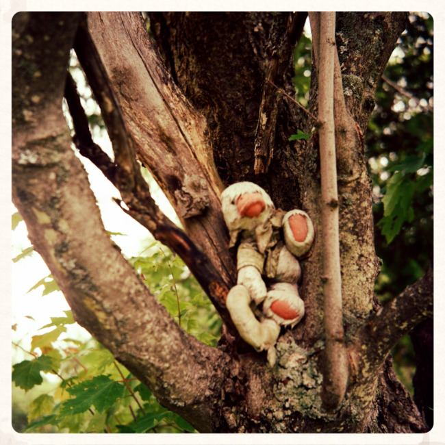Creepy Duck Doll In A Tree (Edit)