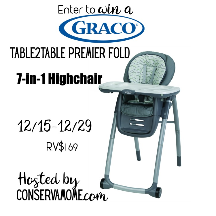 Graco 7-in-1 Highchair Giveaway Ends on 12/29 Keep the young ones safe while eating and easy to convert.  Good Luck.