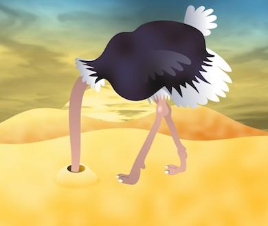 頭を砂につっこむダチョウ