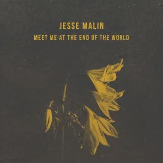 Jesse Malin - Meet Me At The End Of The World EP   recensione