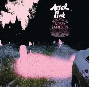 Ariel Pink - Dedicated To Bobby Jameson   recensione